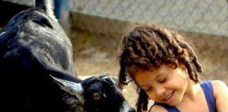 dia das crianças - embudasartes.net - Tudo sobre Embu das Artes